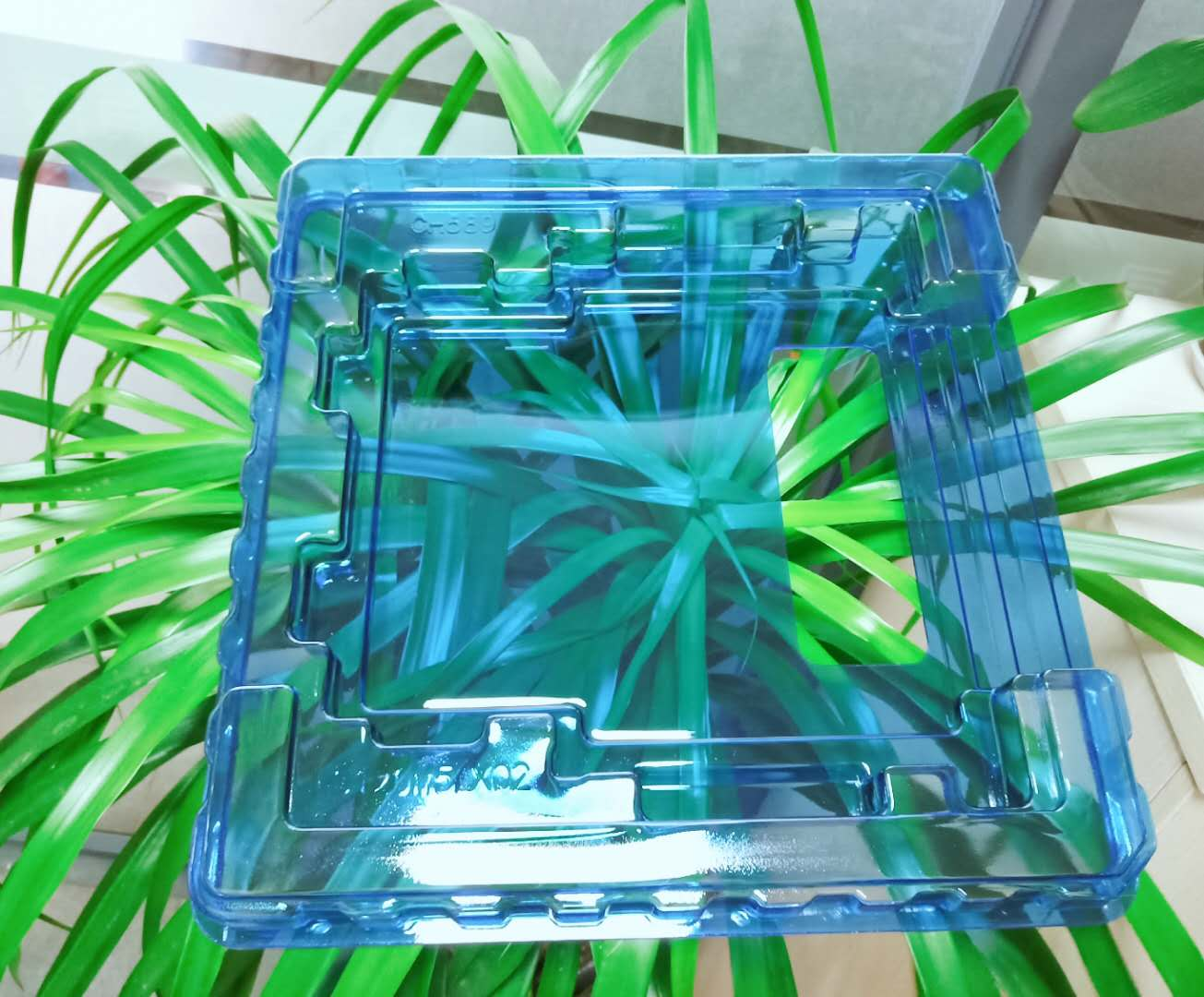 金华PC蓝色吸塑